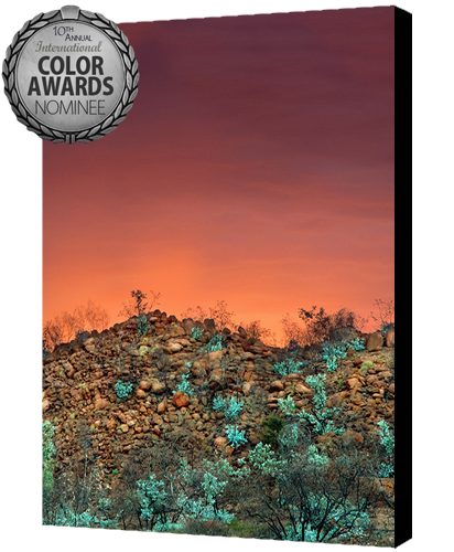 color10th-burnt country
